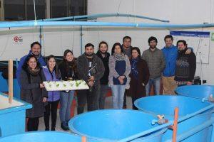 Chile: Escuelas sustentables con acuiponía
