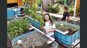 Joven de 15 años lidera proyecto acuaponico