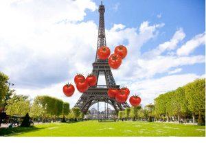 Tomates en el acuario de París